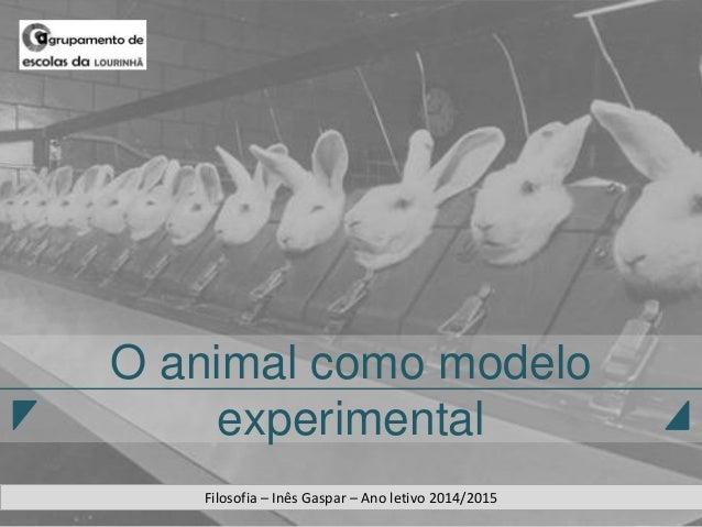 O animal como modelo experimental Filosofia – Inês Gaspar – Ano letivo 2014/2015