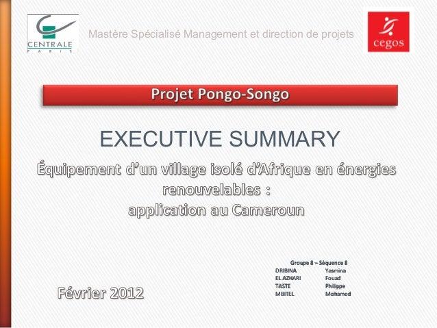 Mastère Spécialisé Management et direction de projets  EXECUTIVE SUMMARY  Groupe 8 – Séquence 8 DRIBINA Yasmina EL AZHARI ...