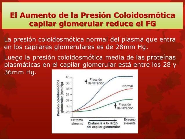 Control fisiológico de la filtración glomerular y del flujo sanguíneo renal Los determinantes del FG son: La presion hidro...