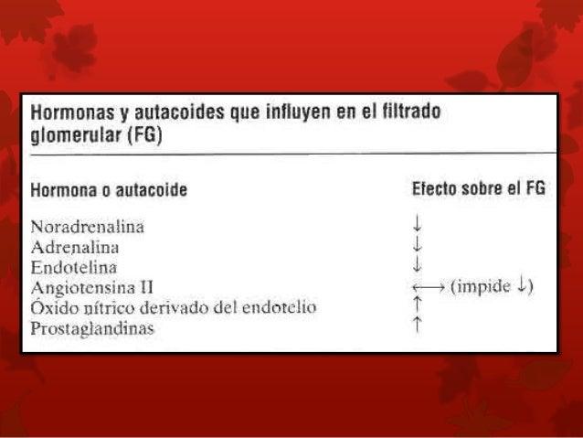 Autorregulación miógena del FSR y FG. •Capacidad de los vasos a estirarse •Movimiento de iones de Ca - aumento de la resis...