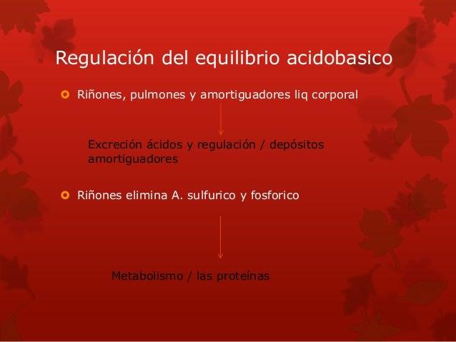 Regulación del equilibrio acidobasico  Riñones, pulmones y amortiguadores liq corporal  Riñones elimina A. sulfurico y f...