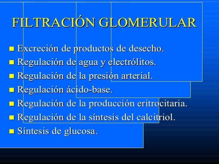 Filtracion Glomerular Slide 2