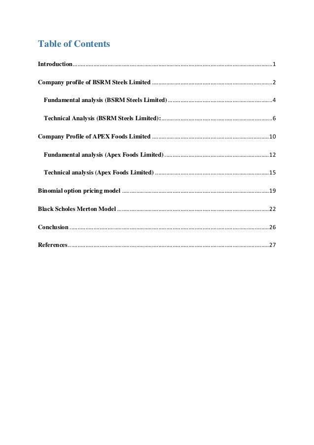 Financial Derivatives - Option Pricing Model report Slide 3