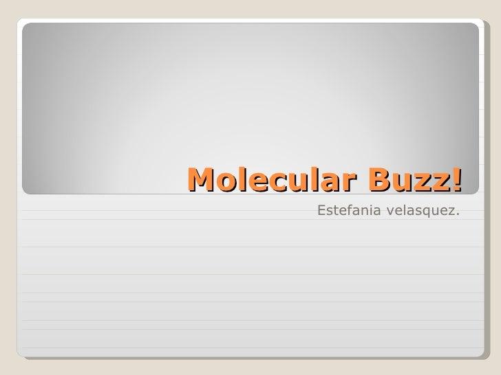 Molecular Buzz! Estefania velasquez.