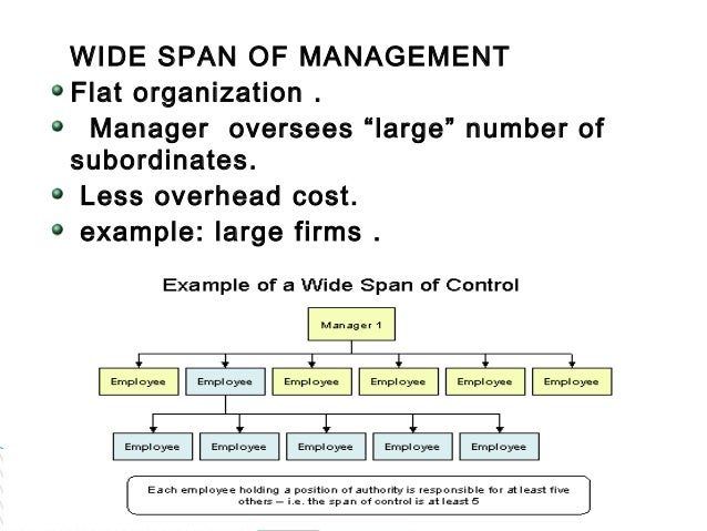 define wide span of control