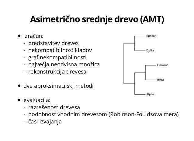 AMT Slide 3