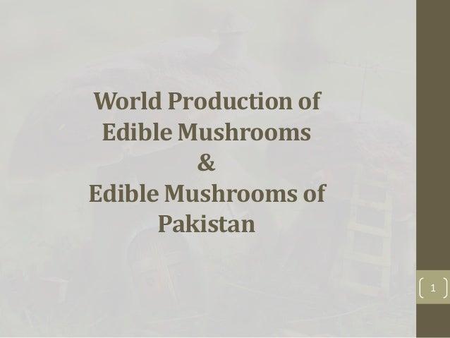 world production of edible mushrooms and edible mushrooms of pakistan