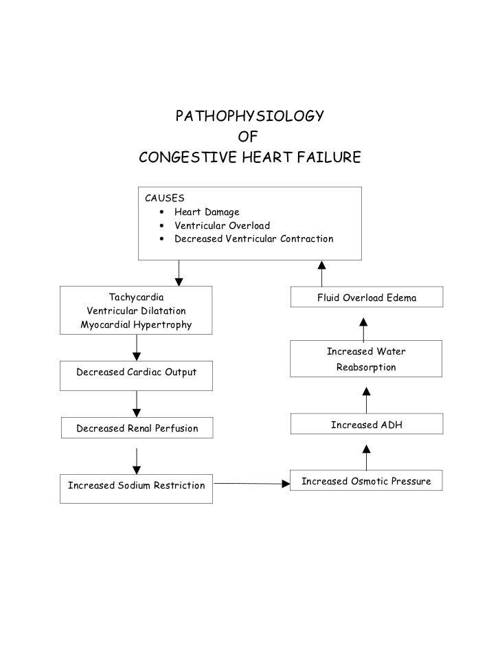 pathophysiology of chf