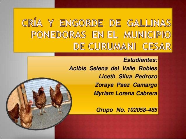Estudiantes:Acibis Selena del Valle RoblesLiceth Silva PedrozoZoraya Paez CamargoMyriam Lorena CabreraGrupo No. 102058-485