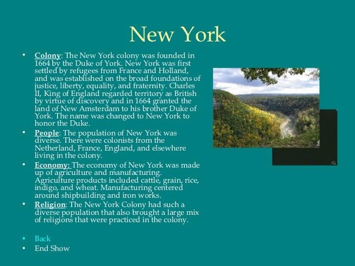 New York Colony Food And Natural Resources