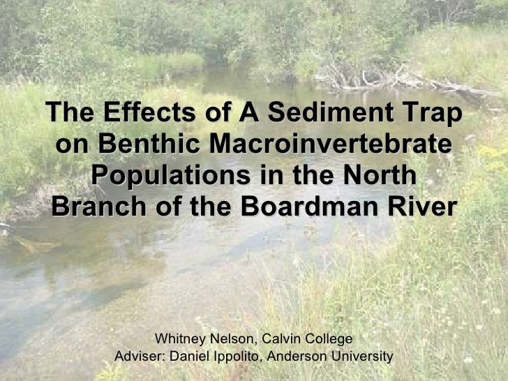The Effects of A Sediment Trap on Benthic Macroinvertebrate Populations in the North Branch of the Boardman River Whitney ...
