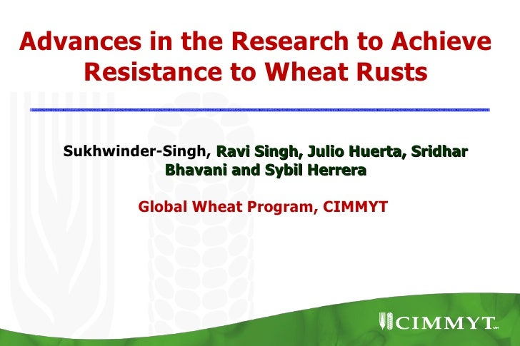 Advances in the Research to Achieve    Resistance to Wheat Rusts   Sukhwinder-Singh, Ravi Singh, Julio Huerta, Sridhar    ...