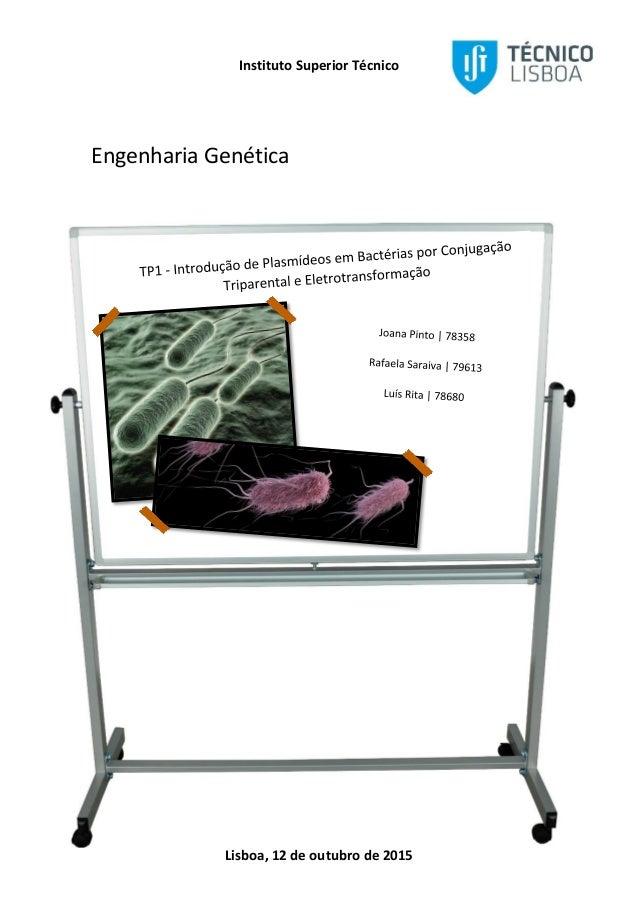 Instituto Superior Técnico Lisboa, 12 de outubro de 2015 Engenharia Genética