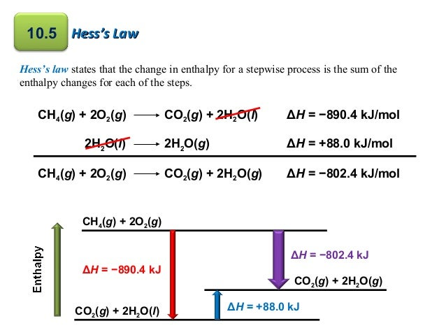 Enthalpy change of photosynthesis buds easy research paper computer manual