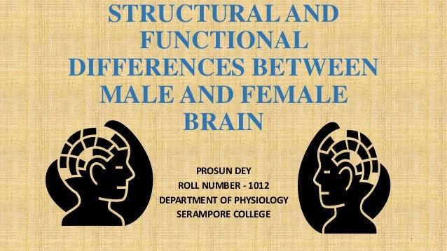 Male Brain Vs Female Brain!