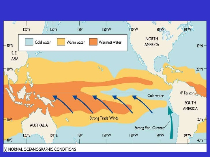 """HOTPOOL              COLD             TONGUE                       NORMAL                      UPWELLING""""NORMAL"""" CONDITIONS"""