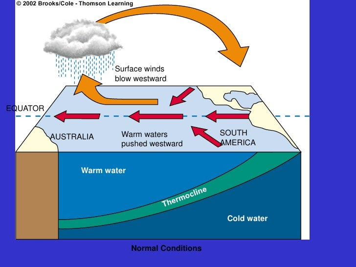 "el nino and la nina Meaning el nino is a spanish term which represents ""little boy"" la nina is a spanish term which represents 'little girl' temperature at the sea surface is warmer than normal sea-surface temperatures."
