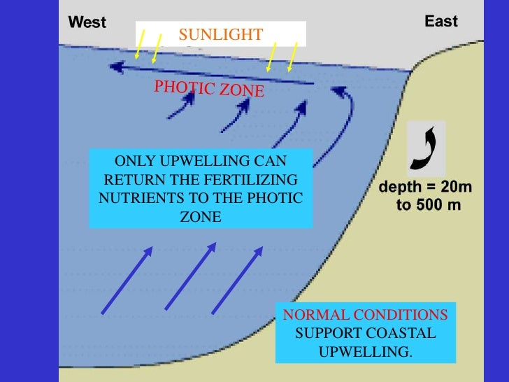 El nino conditions  Normally, temperatures of surface waters in the western Pacific are  6 to 8 degrees Celsius (10 to 15 ...