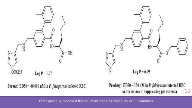Ester prodrug improved the cell membrane permeability of FT inhibitors 12