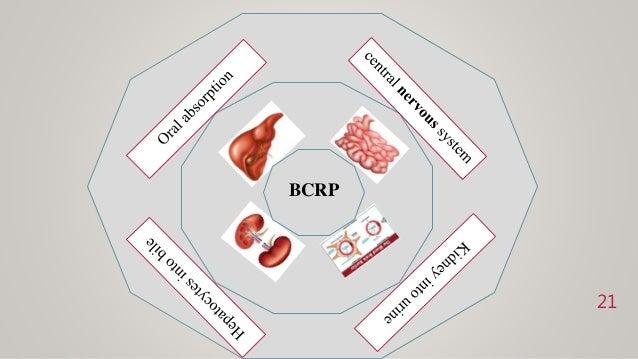 21 BCRP