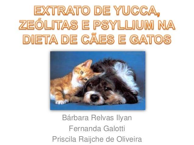 Bárbara Relvas Ilyan Fernanda Galotti Priscila Raijche de Oliveira