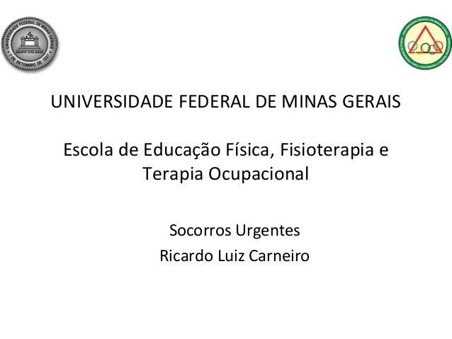 UNIVERSIDADE FEDERAL DE MINAS GERAIS Escola de Educação Física, Fisioterapia e           Terapia Ocupacional              ...