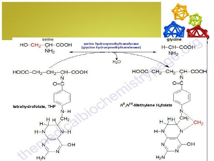 Strecker amino acid synthesis