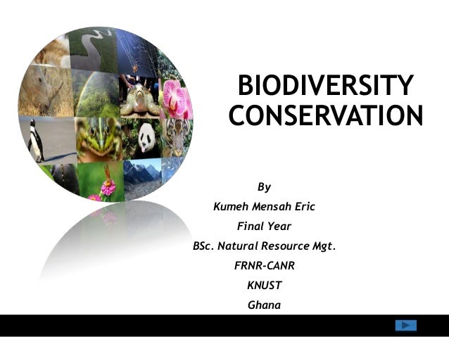 BIODIVERSITY CONSERVATION By Kumeh Mensah Eric Final Year BSc. Natural Resource Mgt. FRNR-CANR KNUST Ghana