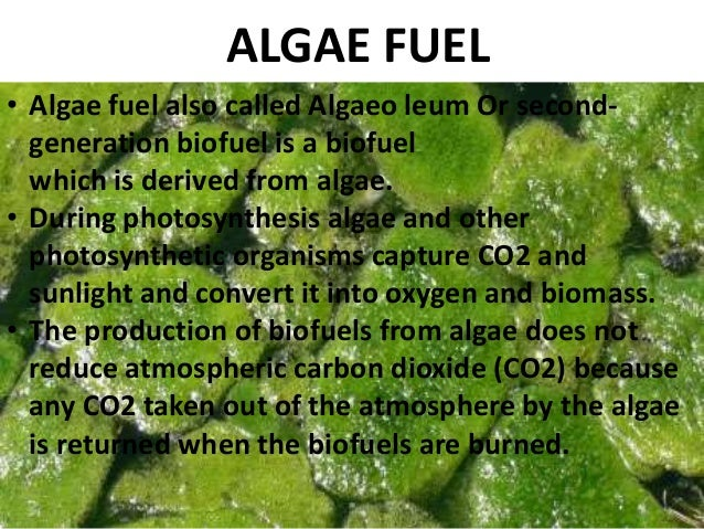 algae biodiesel Algal biodiesel: the next generation biofuel for india  algae in could technically be called a photobioreactor,  the next generation biofuel for india.