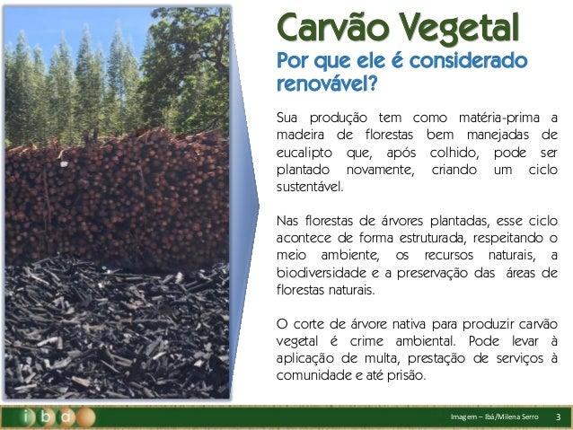 Carvão Vegetal na produção do Aço Verde.  Slide 3