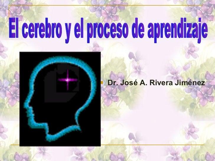 <ul><li>Dr. José A. Rivera Jiménez </li></ul>El cerebro y el proceso de aprendizaje
