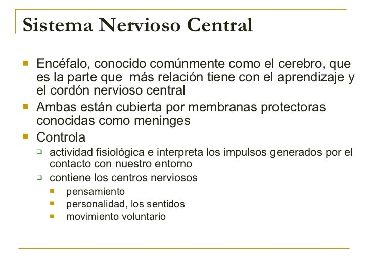 Sistema Nervioso Central <ul><li>Encéfalo, conocido comúnmente como el cerebro, que es la parte que  más relación tiene co...