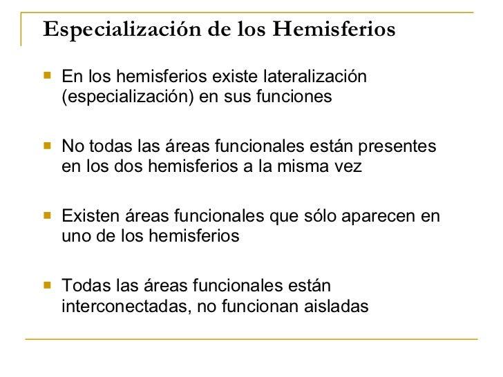 Especialización de los Hemisferios <ul><li>En los hemisferios existe lateralización (especialización) en sus funciones </l...