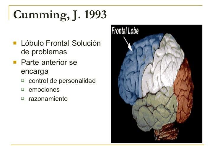 Cumming, J. 1993 <ul><li>Lóbulo Frontal Solución de problemas </li></ul><ul><li>Parte anterior se encarga </li></ul><ul><u...