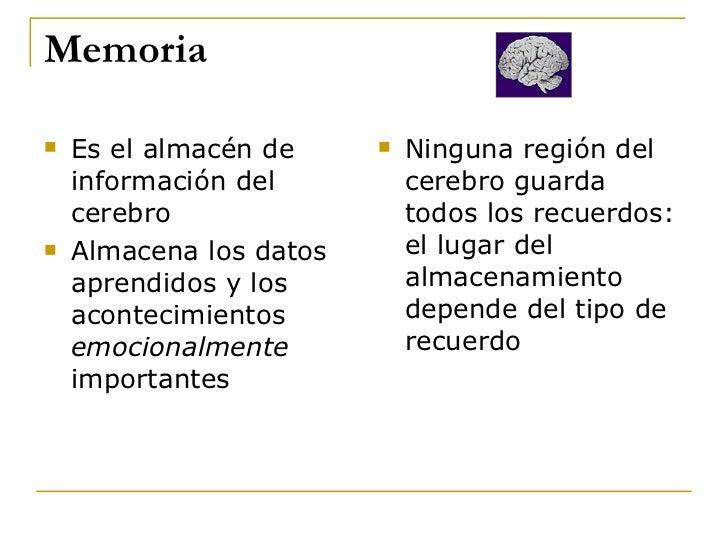 Memoria <ul><li>E s el almacén de información del cerebro </li></ul><ul><li>Almacena   los  datos aprendidos  y los  acont...