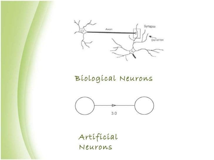 Biological Neurons Artificial Neurons