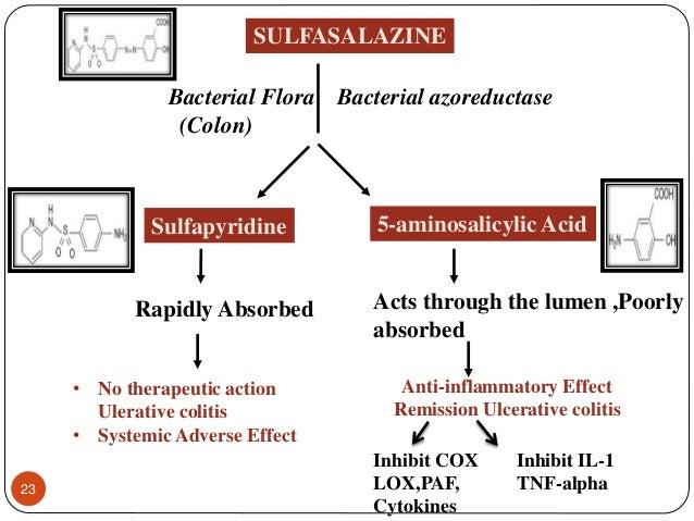 Sulfasalazine Side Effects Rash