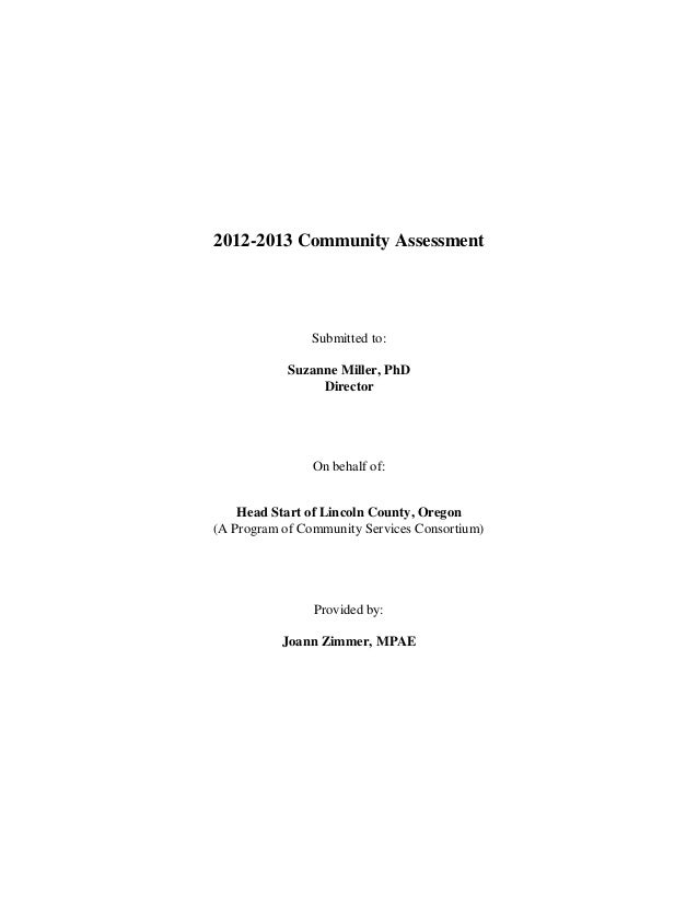 2012-2013 Community Assessment                Submitted to:            Suzanne Miller, PhD                 Director       ...