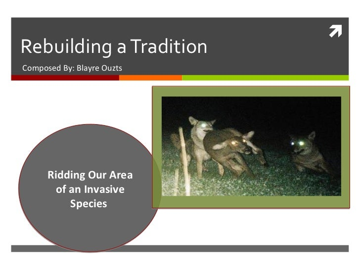 Rebuilding a Tradition Composed By: Blayre Ouzts Ridding Our Area of an Invasive Species
