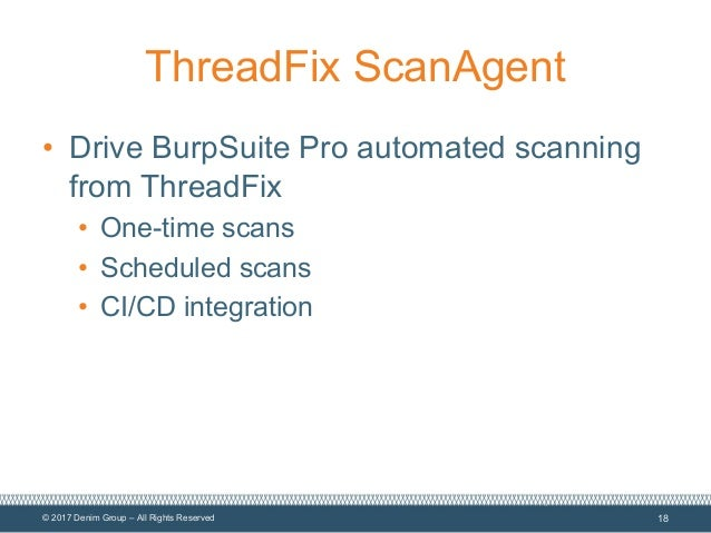 Elevate Your Application Security Program with Burp Suite