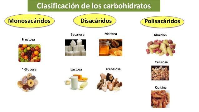 La qu mica en mi vida los alimentos - Que alimentos contienen carbohidratos ...