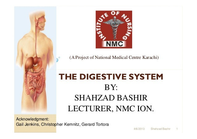 (A Project of National Medical Centre Karachi)                      THE DIGESTIVE SYSTEM                               BY:...