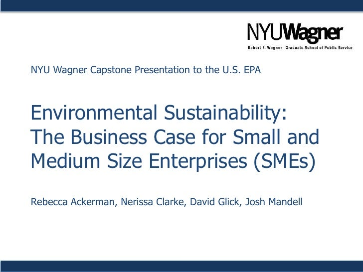 Environmental Sustainability in Business: A Case Study