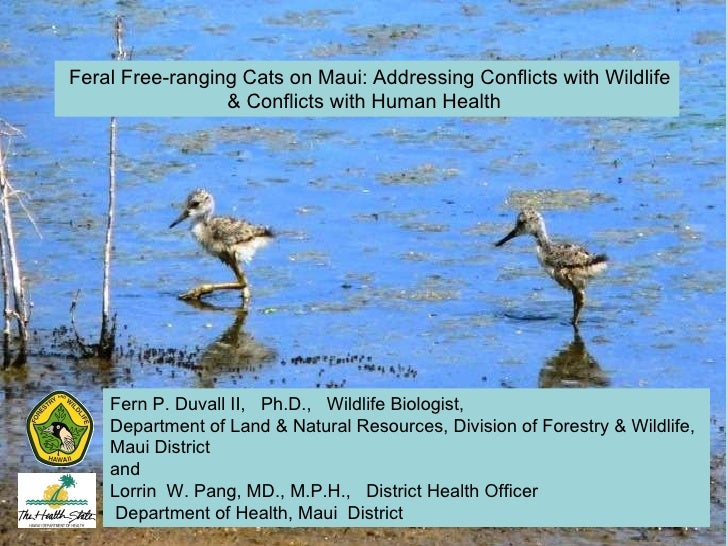 Feral Free-ranging Cats on Maui: Addressing Conflicts with Wildlife & Conflicts with Human Health  Fern P. Duvall II,  Ph....