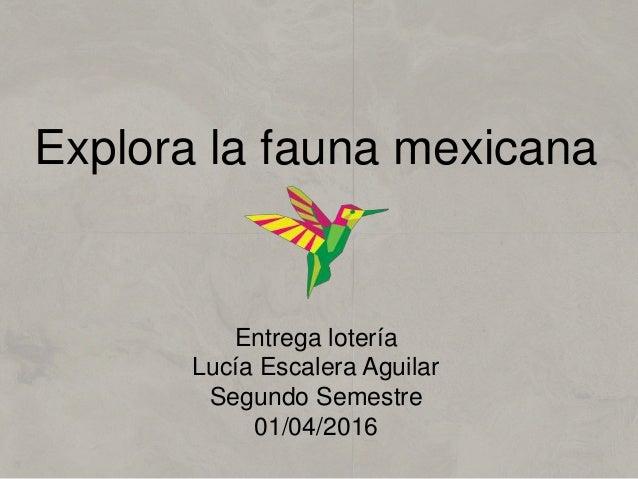 Explora la fauna mexicana Entrega lotería Lucía Escalera Aguilar Segundo Semestre 01/04/2016