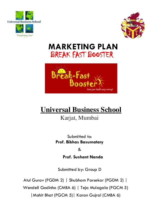 Marketing Plan Pdf Report