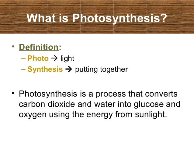 What is meant by the term chemosynthesis