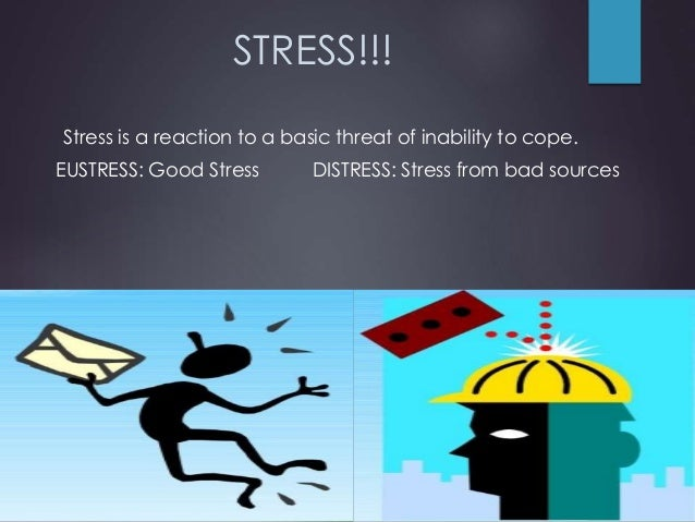 Importance of a Stress Free Envioronment  Slide 2