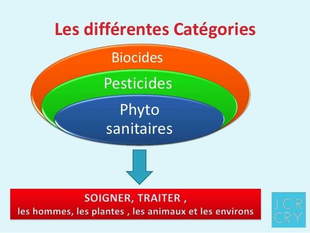 Lexposé sur les champignons les parasites