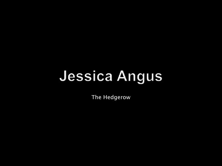 Jessica Angus<br />The Hedgerow  <br />